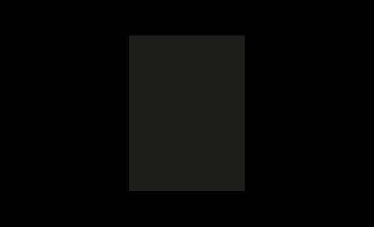 Immagine di Abutment anatomico concavo angolato 20° / H4