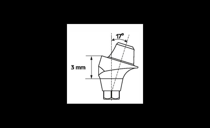 Immagine di Multi-Unit abutment angolato 17°/ H4.5