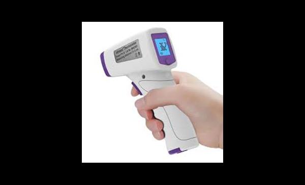 Immagine di Termometro digitale BSX815